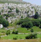 Cueva de Sopeña – Salitre II